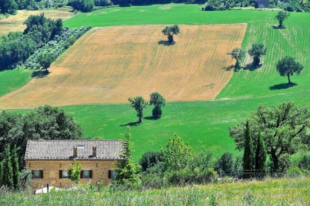 Luxe Design Villa Le  Marche 8