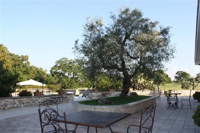 Masseria Met Trullo En Zwembad Puglia 1 (12a)
