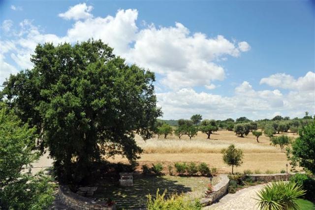 Masseria Met Trullo En Zwembad Puglia 1 (36)