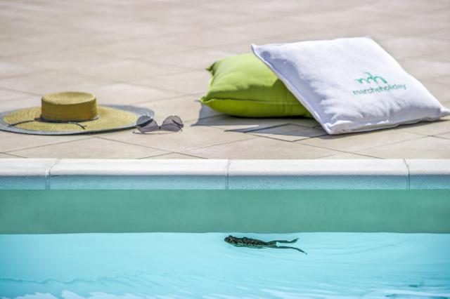 Noord Le Marche Urbino Villa Zwembad 12
