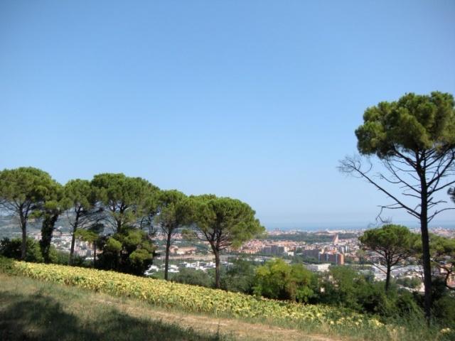 Statig Landhuis Met Appartementen Vlakbij Zee Pesaro 108