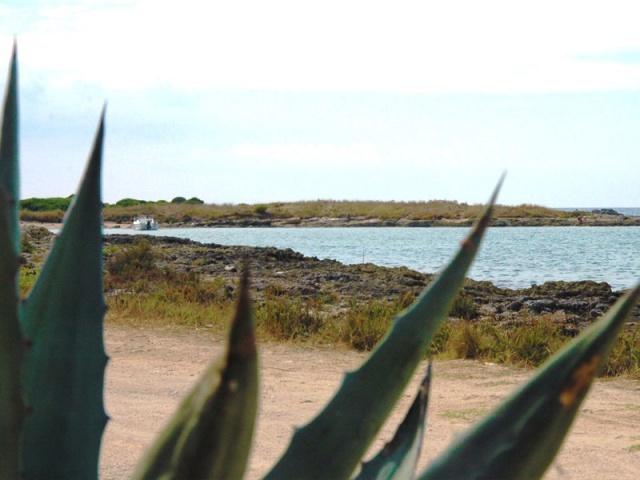 Appartementen Aan Zee Puglia 63