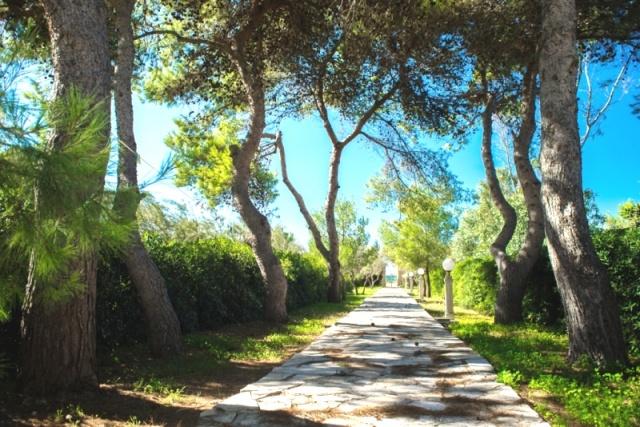 Appartementen Aan Zee Puglia 77