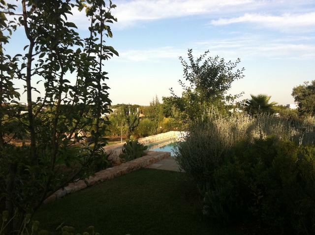 Complex Met Trullo En Lamie En Gedeeld Zwembad Itria Vallei Zuid Italie Puglia 13