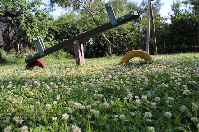 Gargano Vieste Agriturismo Met Zwembad En Manege 11