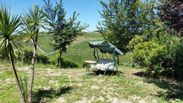 Giardino Tra Le Vigne E Gli Alberi
