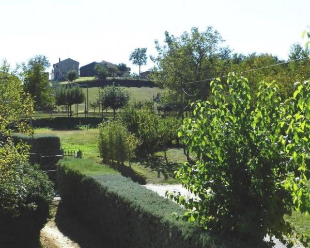 Groot Landgoed Met Huizen En Zwembad Le Marche 71