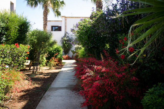 Sicilie Trapani Appartamenten Met Zwembad Vlakbij Zee En Zoutpannen 11
