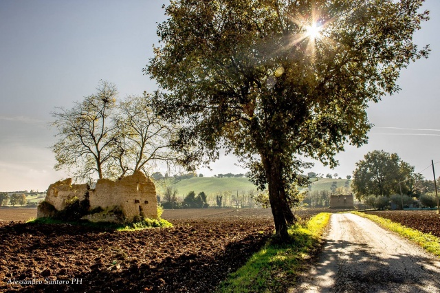 20150421012854Appartement 2 Slaapkamers In Abruzzo Vlakbij Sant Omero 23