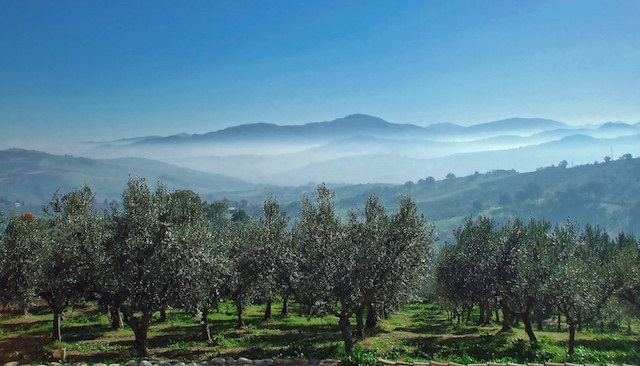 20170829120855villa Voor 2 Personen Abruzzo 10