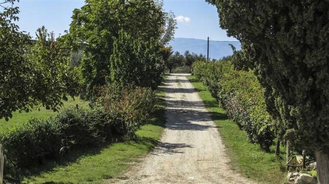 Agriturismo Met Zwembad En Zee Vlakbij Abruzzo 49