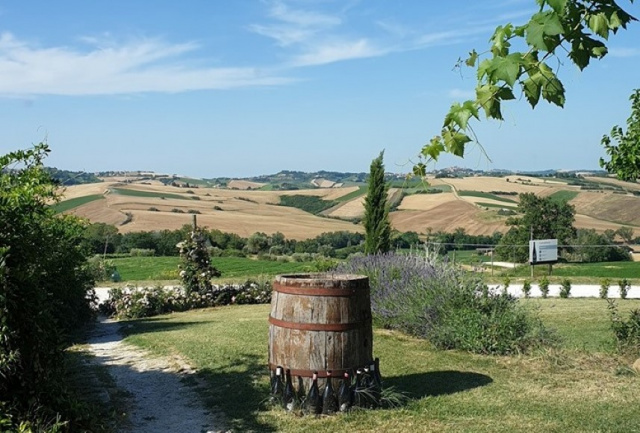Le Marche Agriturismo Zwembad 13
