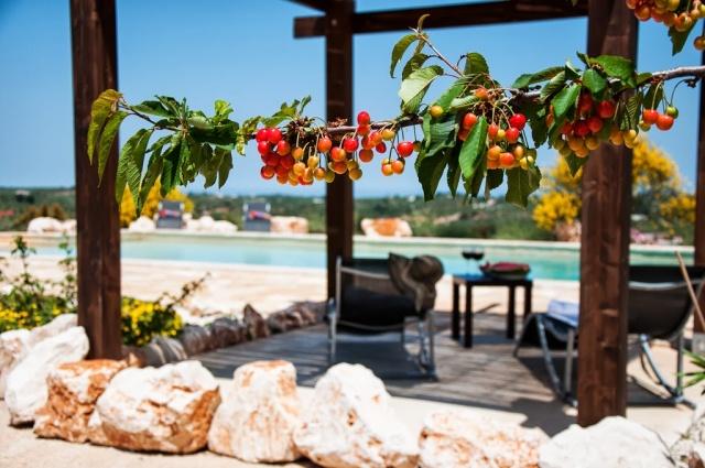 Leuke Trullo Voor 6p Met Pool In Puglia 33