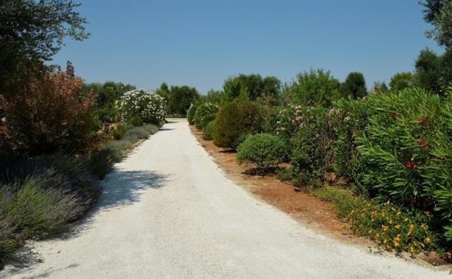 Luxe Vrijstaande Trullo Voor 5p Met Zwembad In Puglia 27