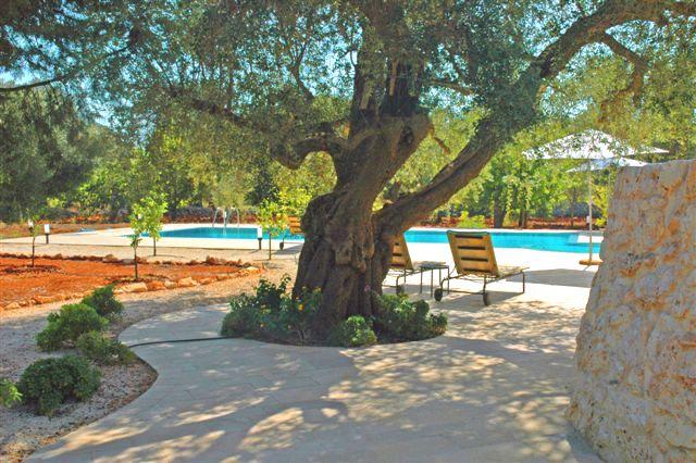 Ruime Trullo Voor 6p Met Zwembad In Puglia 2