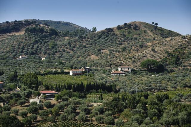 Sicilie Kleinschalige Agriturismo NabijPatti Met Zeezicht En Zwembad 6
