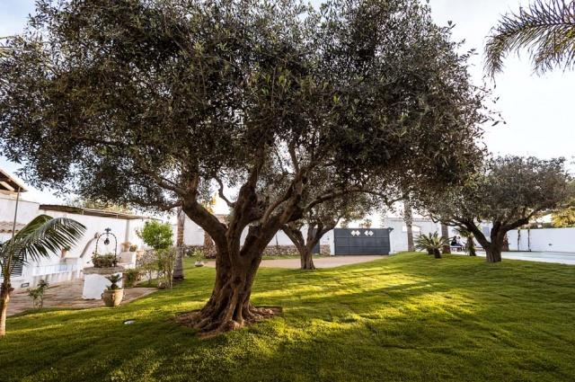 Sicilie Marsala Vakantieappartemet Strand Locatie Met Zwembad 8
