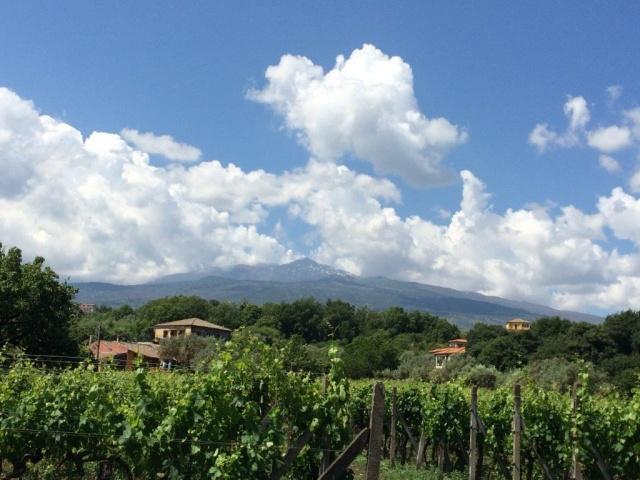 Sicilie Vakanties Landgoed Bij De Etna 4