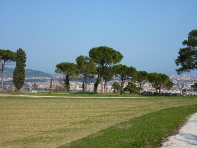 Statig Landhuis Met Appartementen Vlakbij Zee Pesaro 102