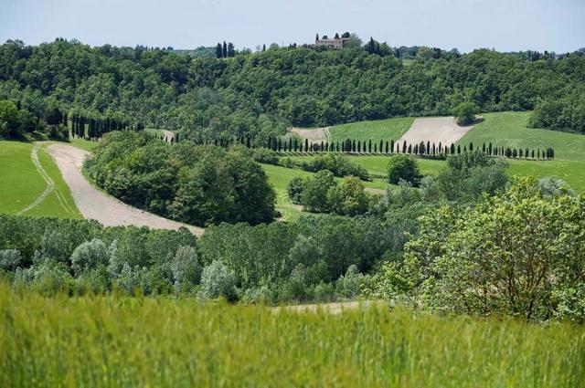 Toscane Villa Zwembad Tussen Pisa Florence 11