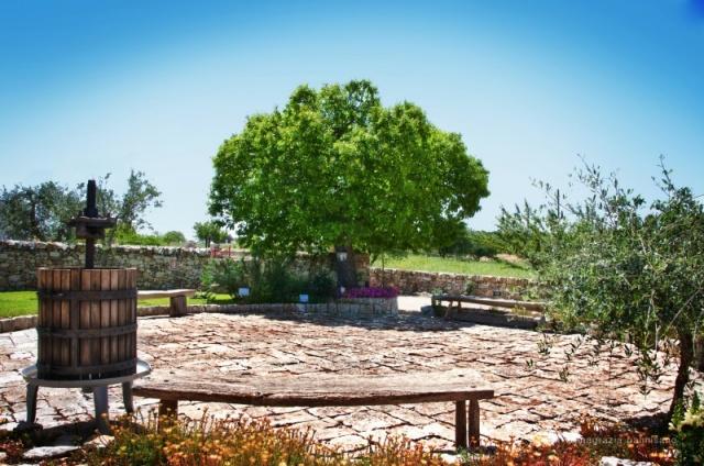 Trullo Op Klein Complex Met Zwembad Puglia 14