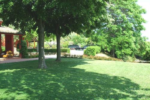 Villa Vlakbij Kust In Zuid LeMarche Abruzzo 13