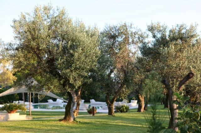 Zuid Puglia Luxe Villa Groot Zwembad 19 Personen 7