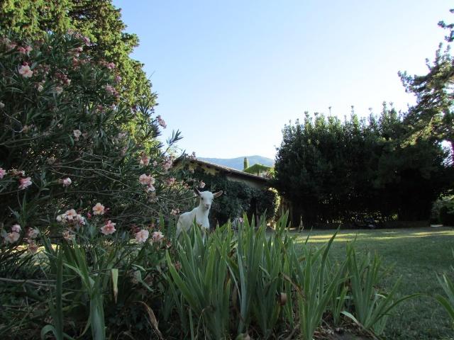 Agriturismo In Natuurrijk Park Met Zwembaden Abruzzo 12