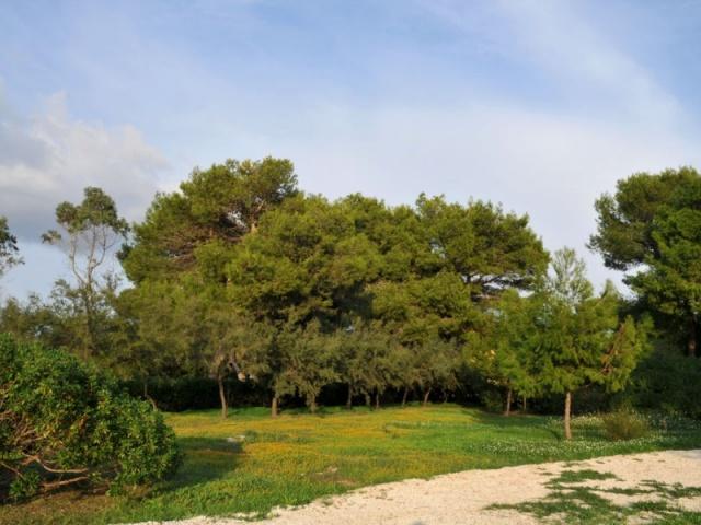 App Aan De Ionische Zee In Puglia Strandvilla 9