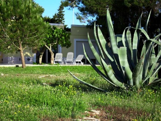 Appartementen Aan Zee Puglia 56