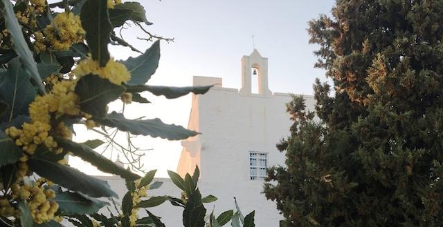 Conversano Luxe Masseria Met Prive Zwembad Puglia 8