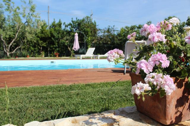 Gargano Puglia Agriturismo Aan De Kust In Vieste Met Zwembad En Manege 1