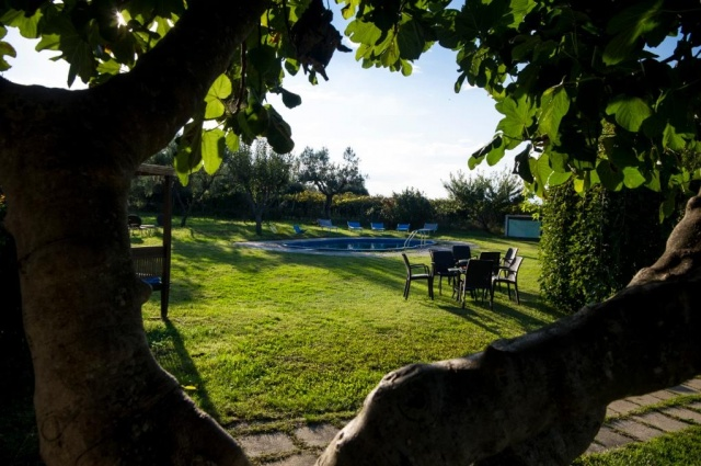 Kleinschalig Agriturismo Abruzzo Vlakbij Zee Met Zwembad 6