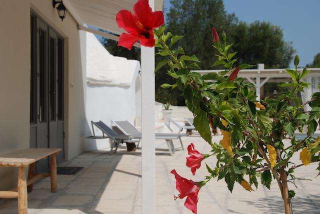 Puglia Vakanties Uniek Trullo Complex Met Twee Zwembaden 11