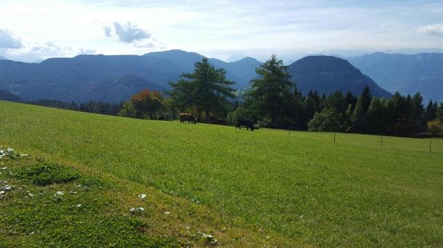 Sudtirol Vakantie Berghut Met Hotel Faciliteiten 34