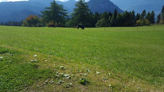 Sudtirol Vakantie Berghut Met Hotel Faciliteiten 35