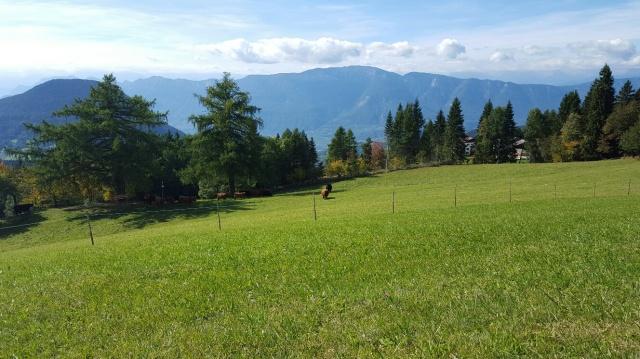 Sudtirol Vakantie Berghut Met Hotel Faciliteiten 43