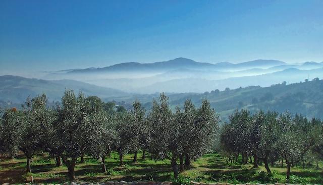 Villa Voor 2 Personen Abruzzo 10